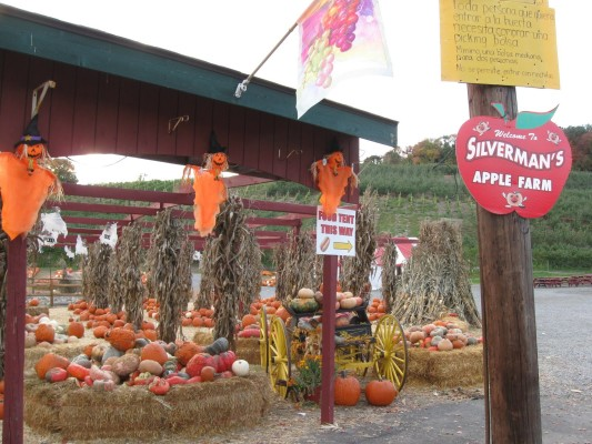 Silverman's Apple Farm. Photo Credit: Carol's Southern Spice.