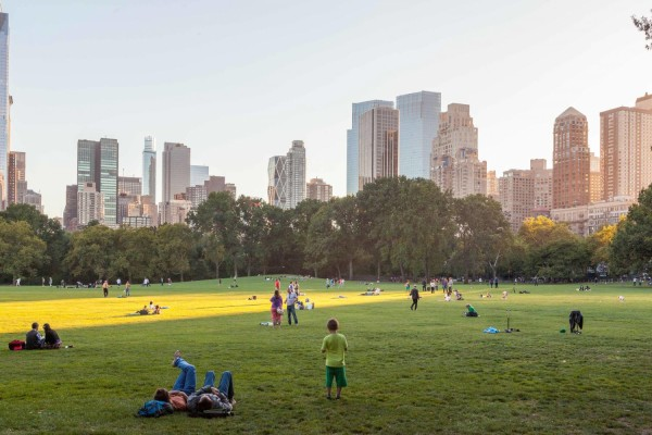 Great Lawn. Photo Credit: NYC Go.
